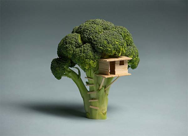 Broccoli-House