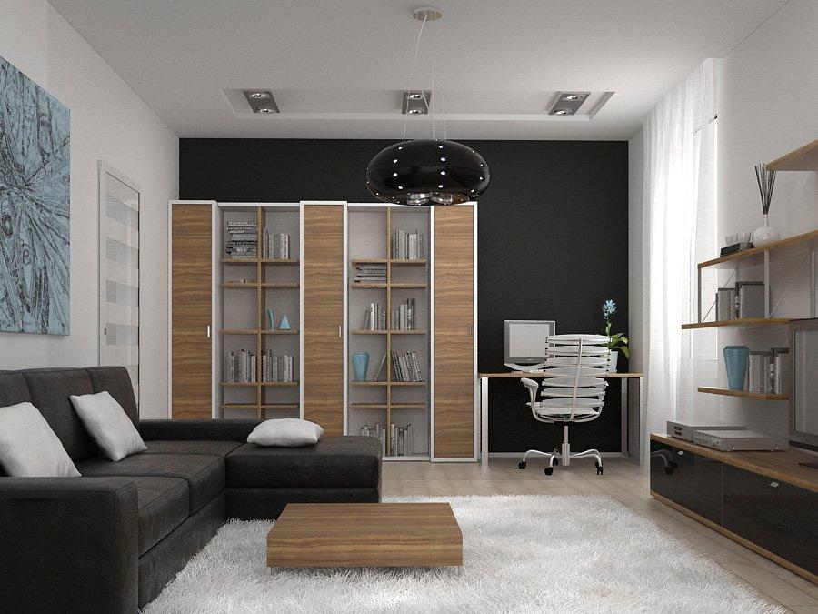 Фото интерьер зала однокомнатной квартиры