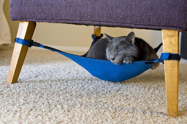 Cat-Crib-620-3