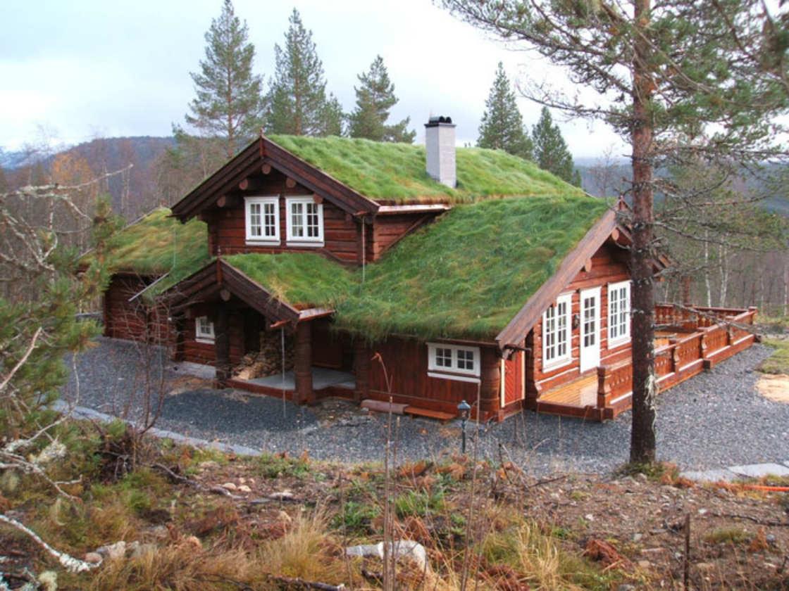 чем, купить проекты домов в норвежском стиле покупать