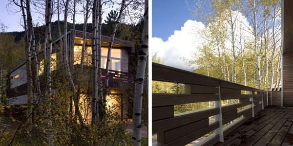 стильная резиденция сливающаяся с лесом