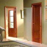 двери в интерьере квартиры фото