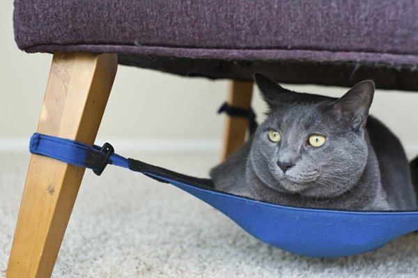 Cat-Crib-620-1