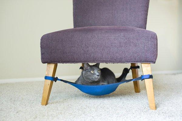 Cat-Crib-620-2