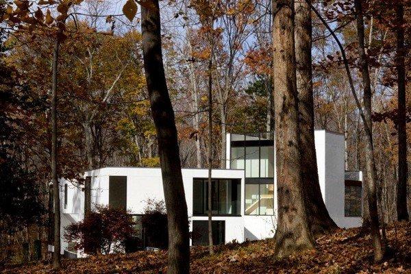Graticule-House-03-2-750x500