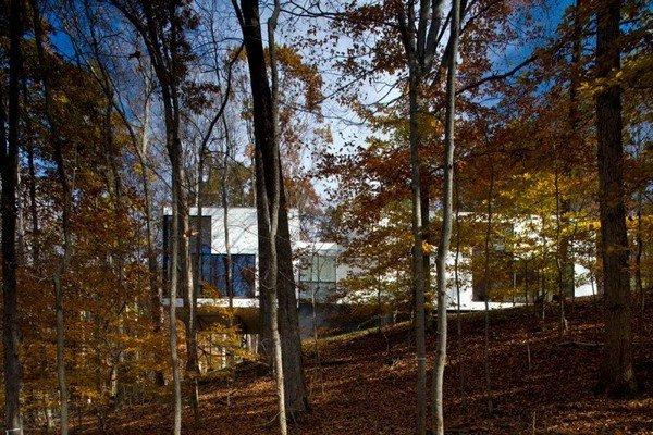Graticule-House-04-6-750x500